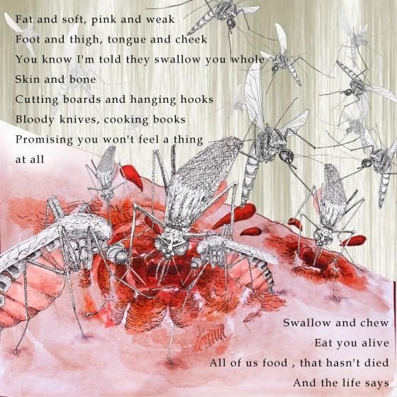 Mosquito[bild3]